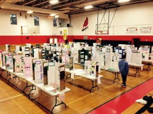 Science Fair Overview 2